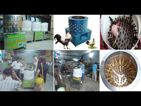 May vat long vit - Máy vặt lông vịt, gà, chó, gia cầm