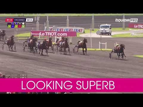 Välkommen till Elitloppet 2020 Looking Superb!