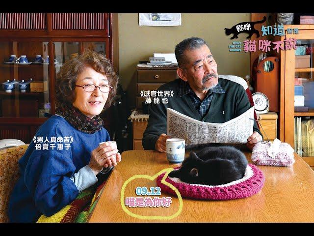 《貓咪知道但是貓咪不說》 Only The Cat Knows │ 09.12 喵是為你好
