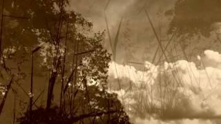 Thanh Thương - Cho Mùa Thu Đã Mất - Sáng tác : Đỗ Dũng