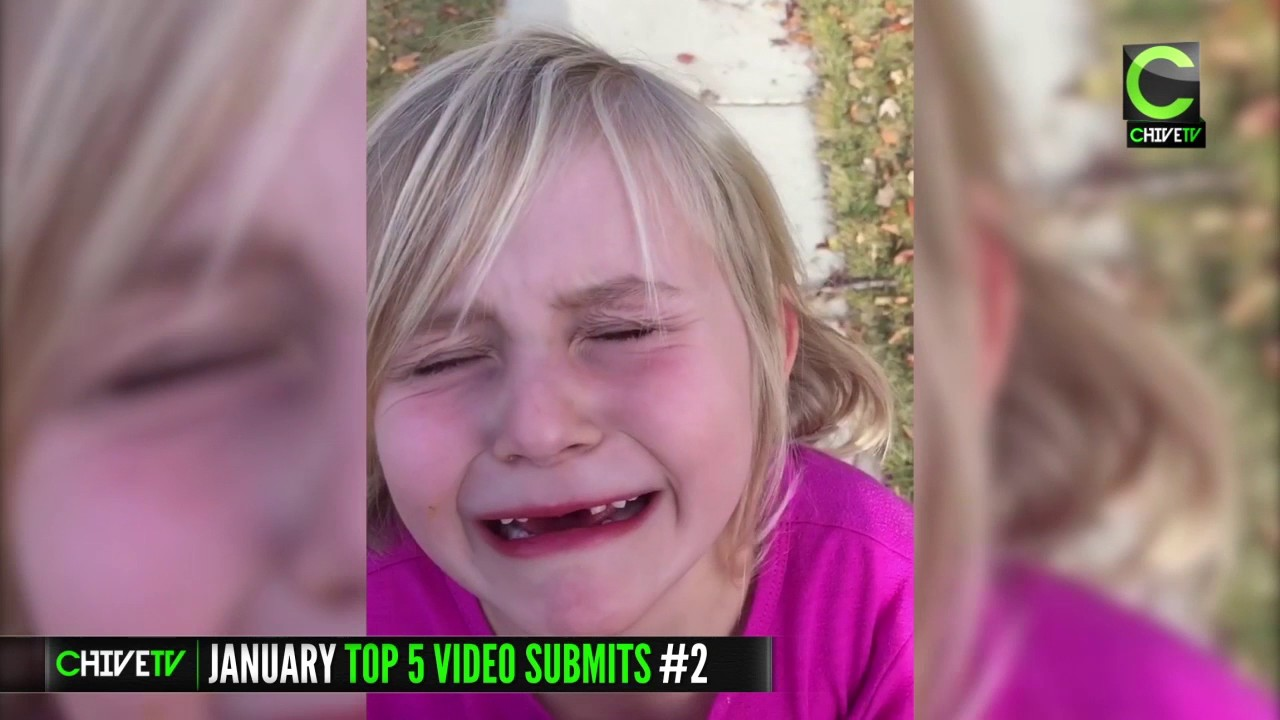 the top 5 user submitted videos of january 2017 youtube