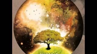 Ivan Picazo - The Promise Land(Original mix) SINCOPAT 03