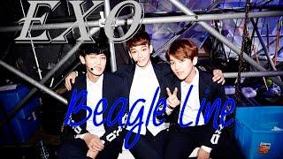 Exo 92line (beagle Line)