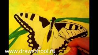"""Урок """"Рисуем бабочку"""" - 2 часть"""