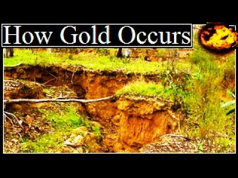 HOW NATURAL GOLD OCCURS. (Documentary Video)
