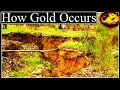 HOW NATURAL GOLD OCCURS PLATINUM. (Documentary Video)