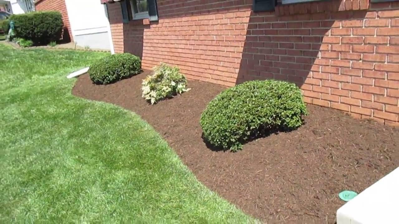 landscape bed edging shrub trim