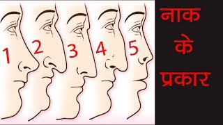 आपका नाक कौन सा है ? शरीर बहुत कुछ कहता है   Personality Test and Study