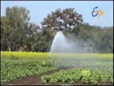 Vedant Sime Rain Gun Irrigation Agriculture Long Range