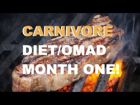 carnivore-diet-|-omad---one-month-update!-|-lola's-life-lessons