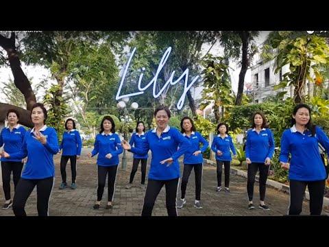lily-(-alan-walker-)-line-dance