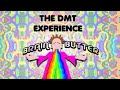 DMT trip report and experience - Live footage of a psychedelic breakthrough experience. Ego death'.