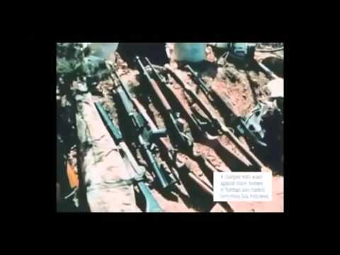 Jihad Training Camps  IN AMERICA