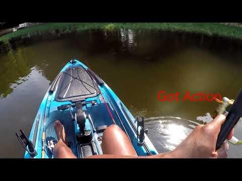 Lake Chesdin Bass Fishing Turned Into Catfishing