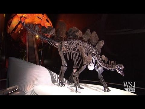 A 100-Million-Year-Old Dinosaur Goes on Display in London