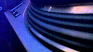 squidey ~ house of windsor