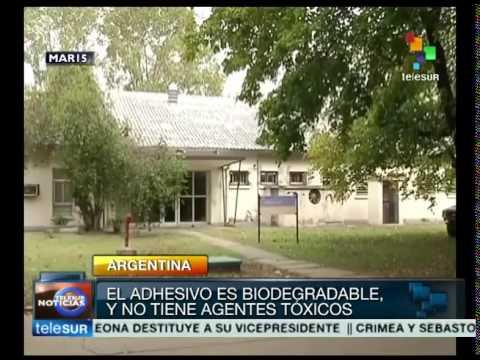 2135 rizne Argentinos crean pegamento biodegradable y no tóxico a base de caseína multimedia tele