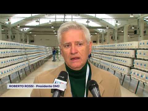 CESENA: Mondiali di ornitologia, 32mila volatili in esposizione | VIDEO
