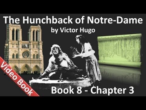 Book 08 - Chapter 3 - The Hunchback of Notre Dame by Victor Hugo - End of the Crown which was