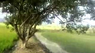 Mintak Rambutan Pak ading with annga Mp3