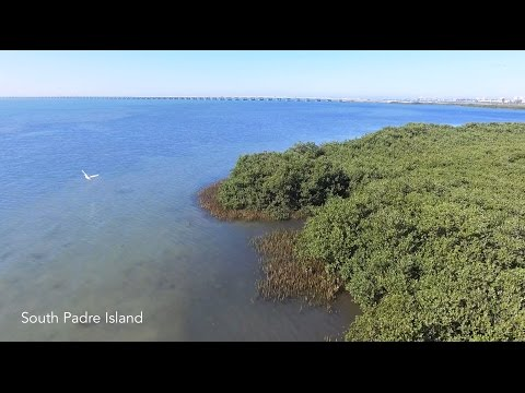 South Padre Island's Hidden Treasure