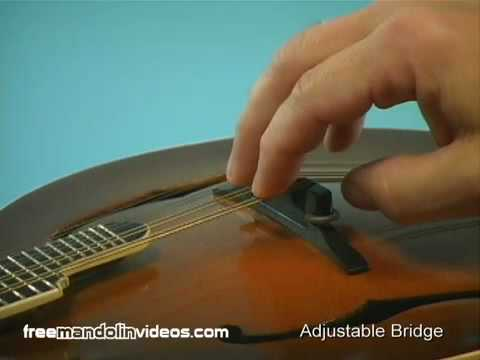 How to Adjust Your Mandolin Action