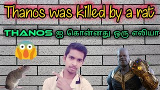 Thanos was killed by a rat - Avengers Endgame | Nano Tech | Tamil | Sk Ganesh |