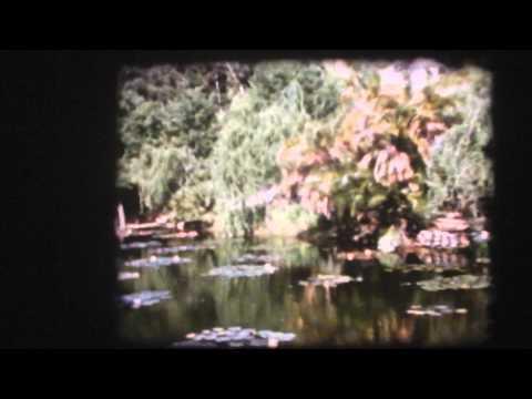 1959 SA  November The Garden Route