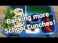 Week 36 - How I make my kindergartner's lunches - Bento Box Style