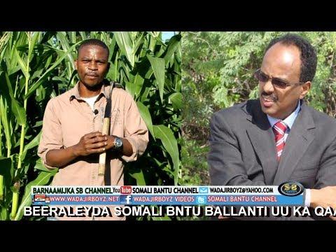 Beeraleyda somali bantu ballanti uu ka qaaday Farmaajo muxu u qabtay ?
