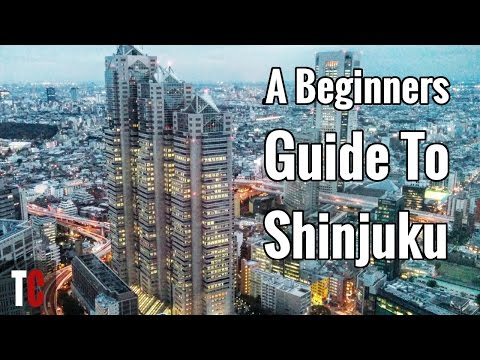 Shinjuku Travel Guide For Beginners