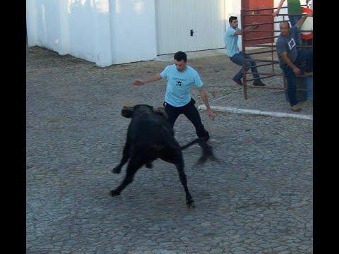 touro na rua são lourenço mamporcão 2013