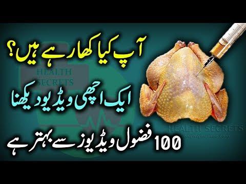 Broiler Chicken Reality Exposed || Broiler Chicken Side Effects || In Urdu / Hindi
