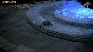 Path of Exile - Tortoise Pet