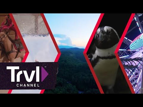 Family Fun in the Great Smoky Mountains - Travel Channel