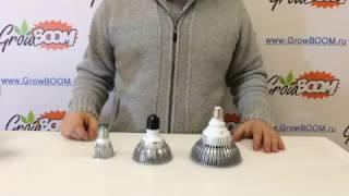 LED фитолампы Е27(LED фитолампа Е27 на 15, 9 и 5 светодиодов. Показаны реальные размеры ламп. http://growboom.ru/lampy/fitolampa-led-10-vt-gb-5 http://growboom.ru/l..., 2016-10-25T11:22:04.000Z)