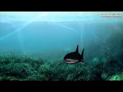 Film 3D Animasi Legenda Kota Surabaya  Seru Mendebarkan Dramatis