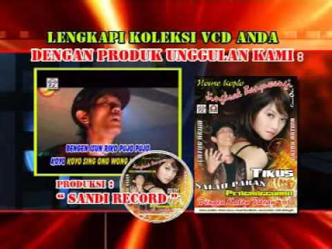 Album house koplo jingkrak banyuwangi