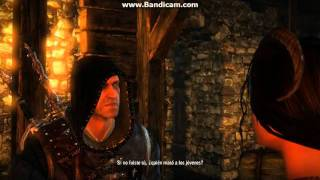 The Witcher 2: meet the Succubus