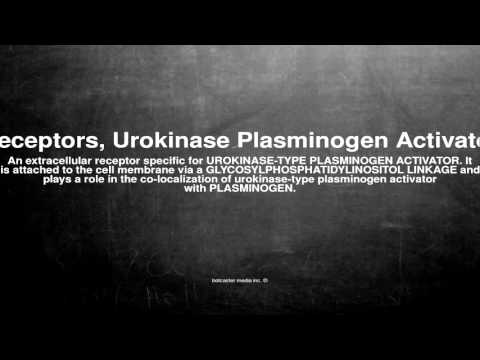 Medical vocabulary: What does Receptors, Urokinase Plasminogen Activator mean