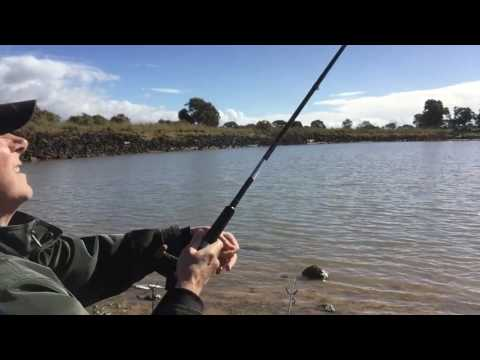Trout Fishing In Melbourne - Tricks To Catching More Fish