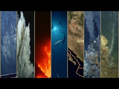 Expedition in 60 Seconds: Gulf of California | Nautilus Live