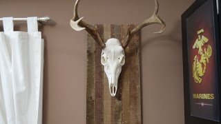 Palletwood European Deer Mount