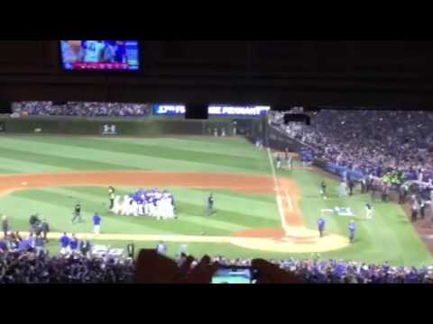Cubs clincher from Tampa Bay Times view