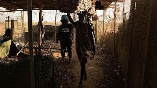 Video Güney Sudan'da cinsel saldırı suçlarında endişelendiren artış download MP3, 3GP, MP4, WEBM, AVI, FLV September 2018