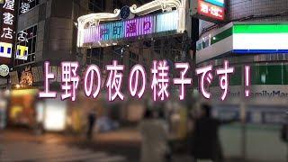 【上野の歓楽街】上野仲町通り 夜の上野の様子をご覧ください。