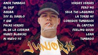 Corridos Tumbados Mix 2021 | Mix De Junior H Top 15 | Ovi, Natanael Cano, Fuerza Regida, Legado 7