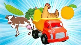 Учим животных и фрукты с грузовичком! Песенки на английском - Английский для детей