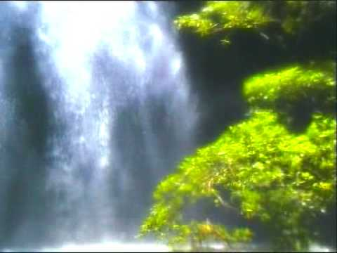 Relaxation- Waterfalls - Rainforest Music Endless Emotion