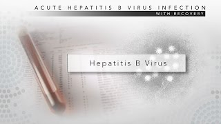Hepatitis B: CDC Viral Hepatitis Serology Training